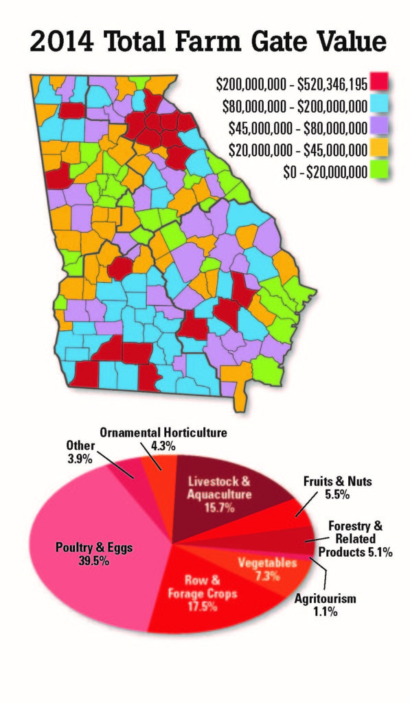 Small Business and It's Impact on Georgia