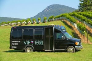 Tour bus parked in vibrant green grass; vineyards extend into the background behind bus