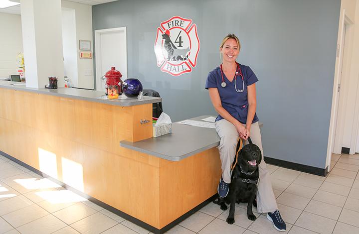 UGA SBDC | Veterinary